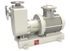TCZ Non-leakage magnetic self-priming pump